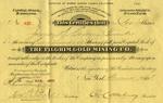 Pilgrim-Gold-Mining