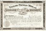 Taylor-Plumas-Mill-Mining